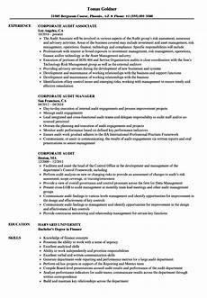 External Auditor Resume Corporate Audit Resume Samples Velvet Jobs