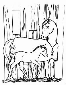 coloriage poney cheval 1001 animaux