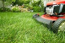 Yard Mowing Service Lawn Service Ryno Lawn Care Llc