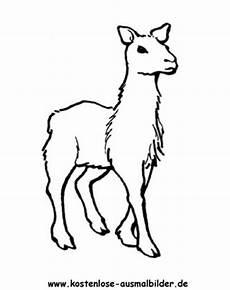 Ausmalbilder Tiere Lama Fortnite Lama Zum Ausmalen Fortnite Free Tiers Season 7