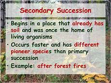 Secondary Succession Ppt Changes In Ecosystems Ecological Succession
