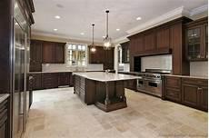 Dark Cabinet Kitchen Design Ideas Traditional Kitchen Cabinets Photos Amp Design Ideas