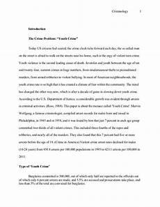 Essays On Crime Criminology Essay