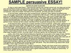 A Persuasive Essay Example What Is A Persuasive Essay