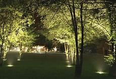 Tree Lights Tree Lighting Installation South West