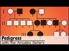Pedigree Chart For Free Or Attached Earlobes Pedigree Definition Amp Charts Expii