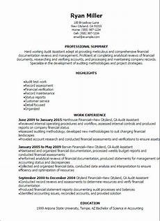 External Auditor Resume Professional Audit Assistant Resume Templates To Showcase
