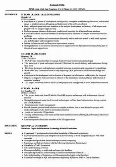 Cv For Team Leader It Team Leader Resume Samples Velvet Jobs