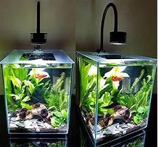 5 Gallon Tank Light Lominie Led Aquarium Light Asta 20 Nano Dimmable