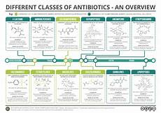 Gram Positive And Gram Negative Bacteria Chart The 25 Best Gram Negative Bacteria Ideas On Pinterest