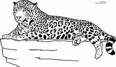 Kinder Malvorlagen Jaguar Pin Auf Ausmalbilder