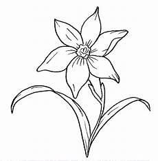 fiori da disegnare dibujos para colorear maestra de infantil y primaria