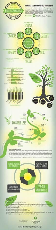 Moringa Chart Infographic Moringa Benefitsthe Moringa Project
