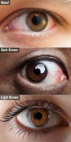 How To Get Light Brown Eyes Fast How To Select The Proper Hair Colour For Your Brown Eyes