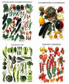 Vegetable Picture Chart Vegetable Charts Vegetable Picture Posters Eatwell101