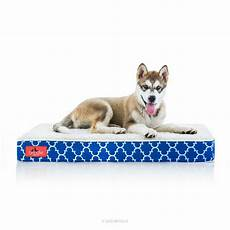 brindle waterproof designer memory foam pet bed reviews