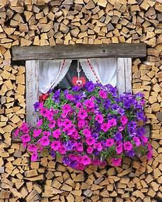 fioriere per davanzale finestra la finestra con i fiori nel legno the window with