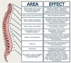 Arm Diagnosis Chart Nerve Sciatic Nerve Chart