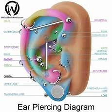Daith Piercing Chart 50 Orbital Piercing Ideas Amp What To Expect Ultimate Guide