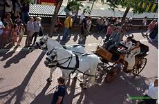 carrozza per matrimonio noleggio carrozza matrimonio con cavalli toscana grosseto