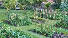 4 home vegetable garden ideas types on a budget