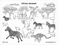 animals coloring page coloringbay