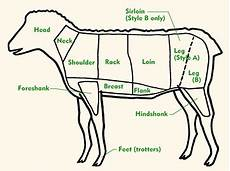 Lamb Sheep Cuts By Chart