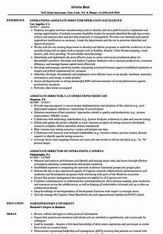 Operations Associate Job Description Operations Associate Director Resume Samples Velvet Jobs