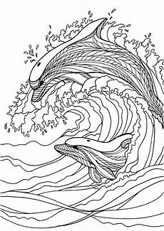 coloring pages dolphin at getcolorings free