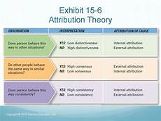 Attribution Theory Chart Understanding And Managing Individual Behaviour Online