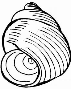 Printable Pictures Of Seashells Seashell Printable Coloring Pages Coloring Home