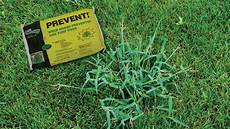 Control Crab Grass When To Apply Prevent For Crabgrass Protection Grass Pad