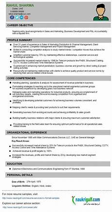Business Development Executive Resume Business Development Manager Cv Format And Sample