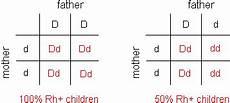 Blood Type Heredity Chart Human Blood Rh Blood Types