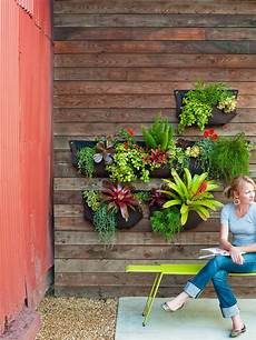 favorite diy garden projects sunset magazine