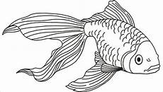 Malvorlagen Fisch Kostenlos 8 Fish Coloring Pages Jpg Ai Illustrator Free