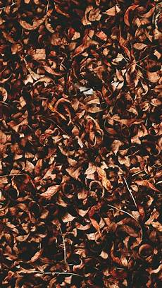 Fall Wallpaper Iphone Aesthetic by Alexandrahuffy Fall Wallpaper Fall