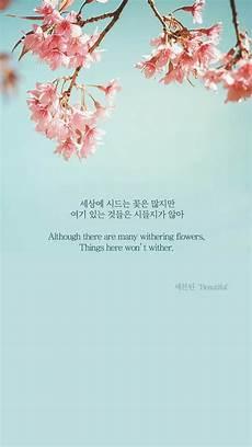 Flower Wallpaper Song by Seventeen Beautiful Wallpaper Ponsel Kutipan Lirik