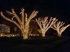 Tree Lights Dallas Landscape Lighting