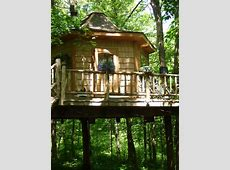 Unique Tree House   Unusual Place To Stay   VRBO