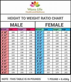 Ladies Height And Weight Chart Height To Weight Ratio Chart By Atuls218 On Deviantart