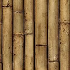 Bamboo Texture Bamboo Texture Seamless 12275