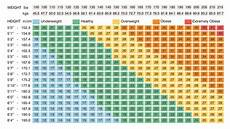 Age And Weight Chart For In Kg Healthy Weight Loss With Paleo Part 4 The Paleo