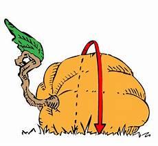 Pumpkin Weight Chart Giant Pumpkin Weight Estimation Charts Giant Pumpkins Nz