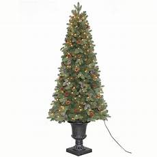 Home Depot Trees With Lights Home Accents Holiday Tv66p2534c00 6 5 Greenland Potted