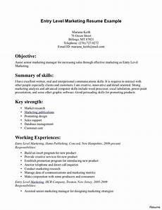 Resume Entry Level Objective Examples Entry Level Resume Template Ipasphoto