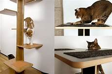 Modern Cat Contemporary Cat Furniture For Pet Homesfeed