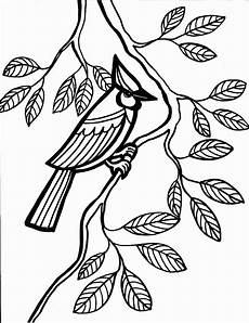 bird coloring pages coloring