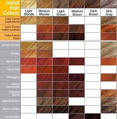 Brown Hair Color Chart Coloring Hair And Hair