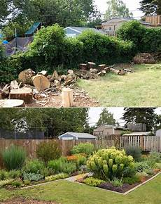 my garden before and after 2 years apart gardening